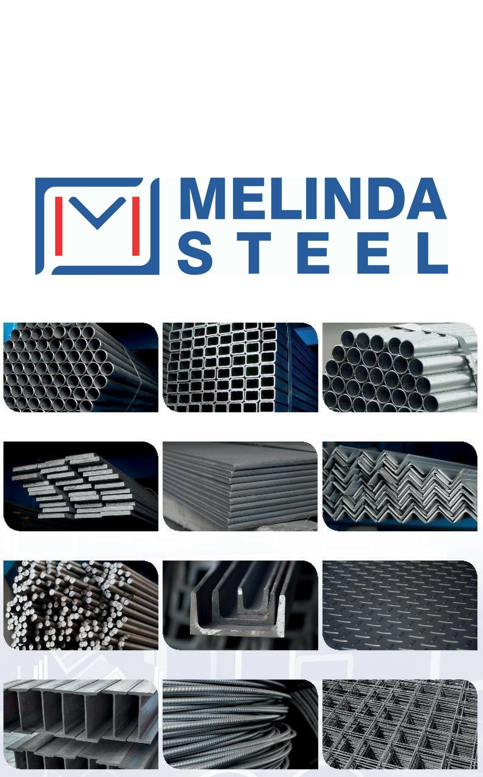 Melinda Steel, az acél szakértői